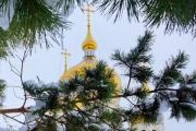 Крещенские морозы отАнадыря доМадрида: фотообзор