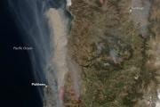 В Чили полыхают лесные пожары: фото из космоса