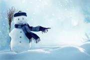 Метеорологические итоги очень теплой второй февральской декады в Воронеже