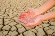 У жителей пустыни нашли способность пить отравленную мышьяком воду