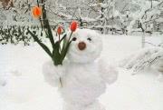 Весенний Кишинев поразил «снежный апокалипсис»: фотообзор
