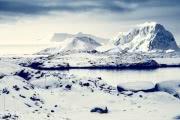 В таянии Антарктиды виноват ветер