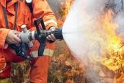 В Приамурье объявлен режим ЧС из-за опасности лесных пожаров
