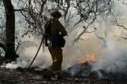 Власти Калифорнии заявили о переломном моменте в борьбе с пожарами