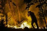 Ужасающие пожары в Португалии: фотообзор