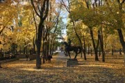Черноземье: надолго затягивать с теплом осень не намерена