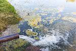 Режим ЧС в Томске: стоки сбрасывают в реки и озера